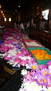 Lotus flower offerings
