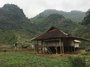 Traditional stilt house