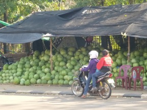 Small moped, or they are melons and not gooseberries.