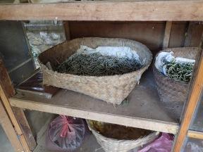 Silk maggots. More valuable alive, not eaten.